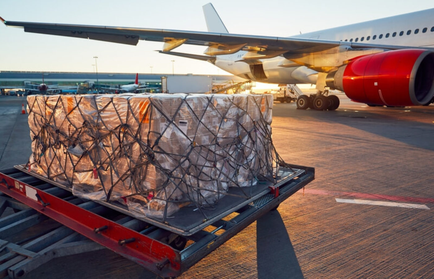How Has Air Cargo Capacity Demand Changed in 2021?